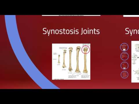 Joints Video Lecture PT