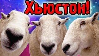 Хьюстон Мы Возвращаемся! (Home Sheep Home) №5