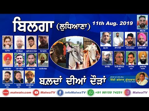 BILGA (Ludhiana) 🔴 OX RACES - ਬਲਦਾਂ ਦੀਆਂ ਦੌੜਾ [11th-Aug-2019] 🔴 LIVE STREAMED VIDEO