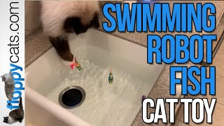 Electronic Cat Toy: Robo Fish Cat Toy Unboxing Video Blackhole Cat Littermat YouTube