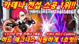 최초공개!! 카데나 전섭 1위!!!! LV250 만렙 카데나 님 하드매그너스 순삭 영상(진짜 대박!!)
