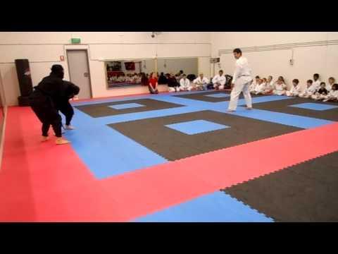 Ninja vs Karate