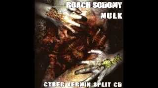 Roach Sodomy - Be Welcomed In The Land Of The Roaches