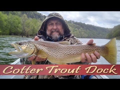Arkansas White River Trout Fishing Report April 17, 2019