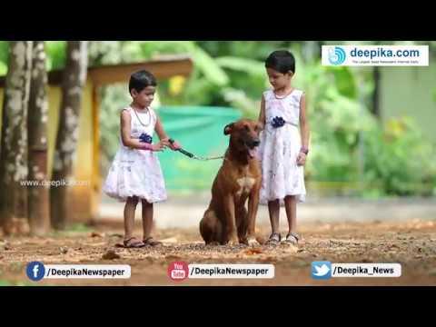 Saajan Saji Cyriac K9 dog training school.9961310970