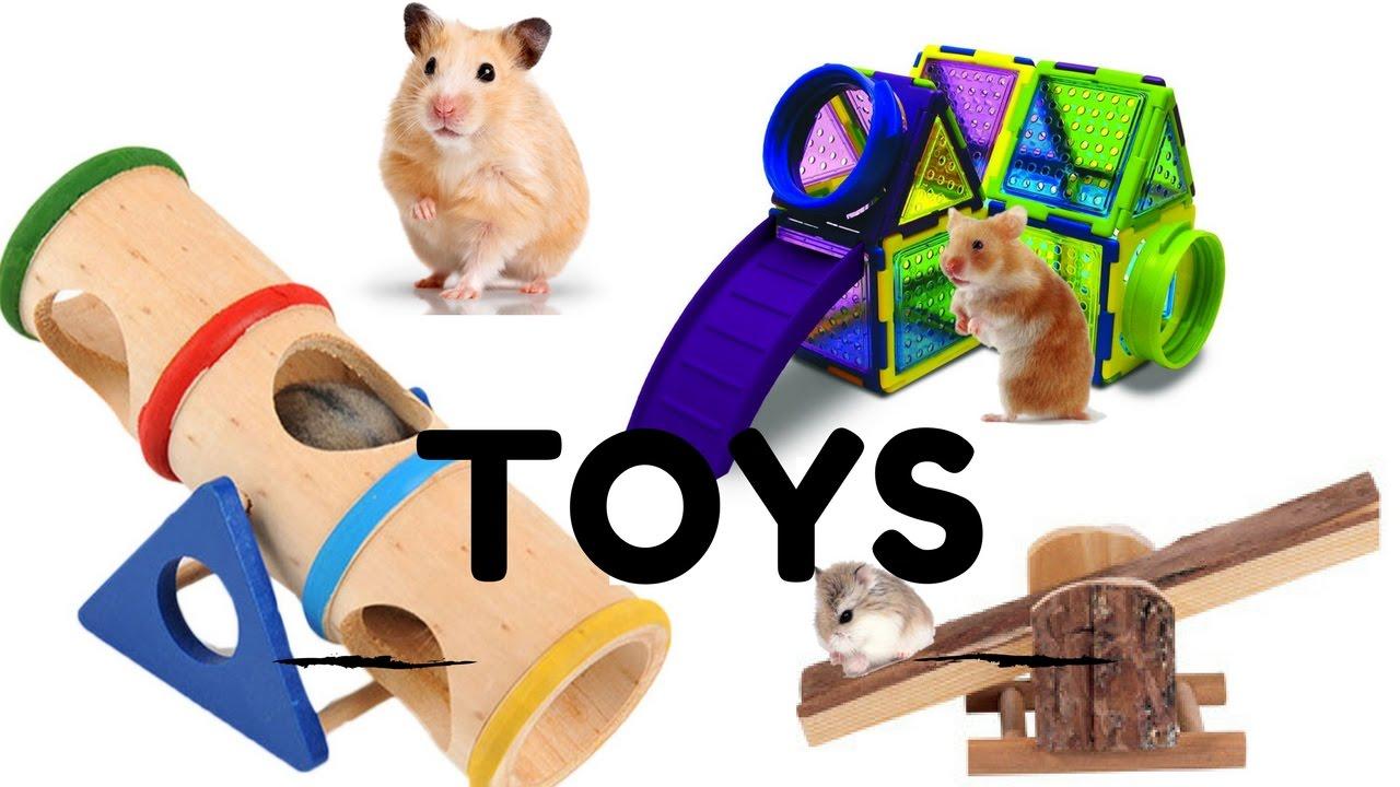 How To Make Homemade Hamster Toys