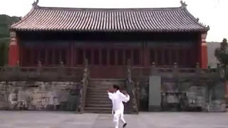 Wudang 5 Animals Qigong by Master Li Yuan Fei of Traditional Daoist Gongfu Academy