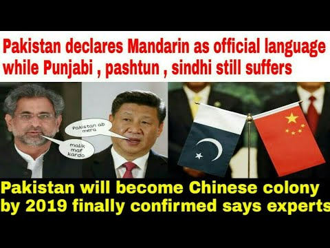 Pakistan declares Mandarin as official language neglecting others|| turning into China's colony