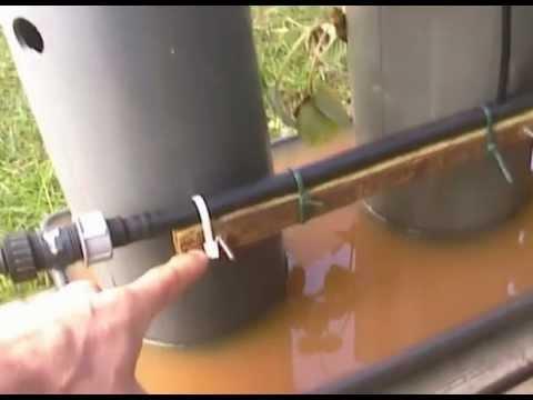 morangueiros em tubos verticais - YouTube