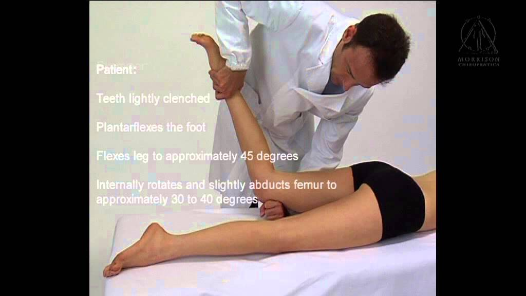applied kinesiology - manual muscle testing: gracilis - youtube, Muscles