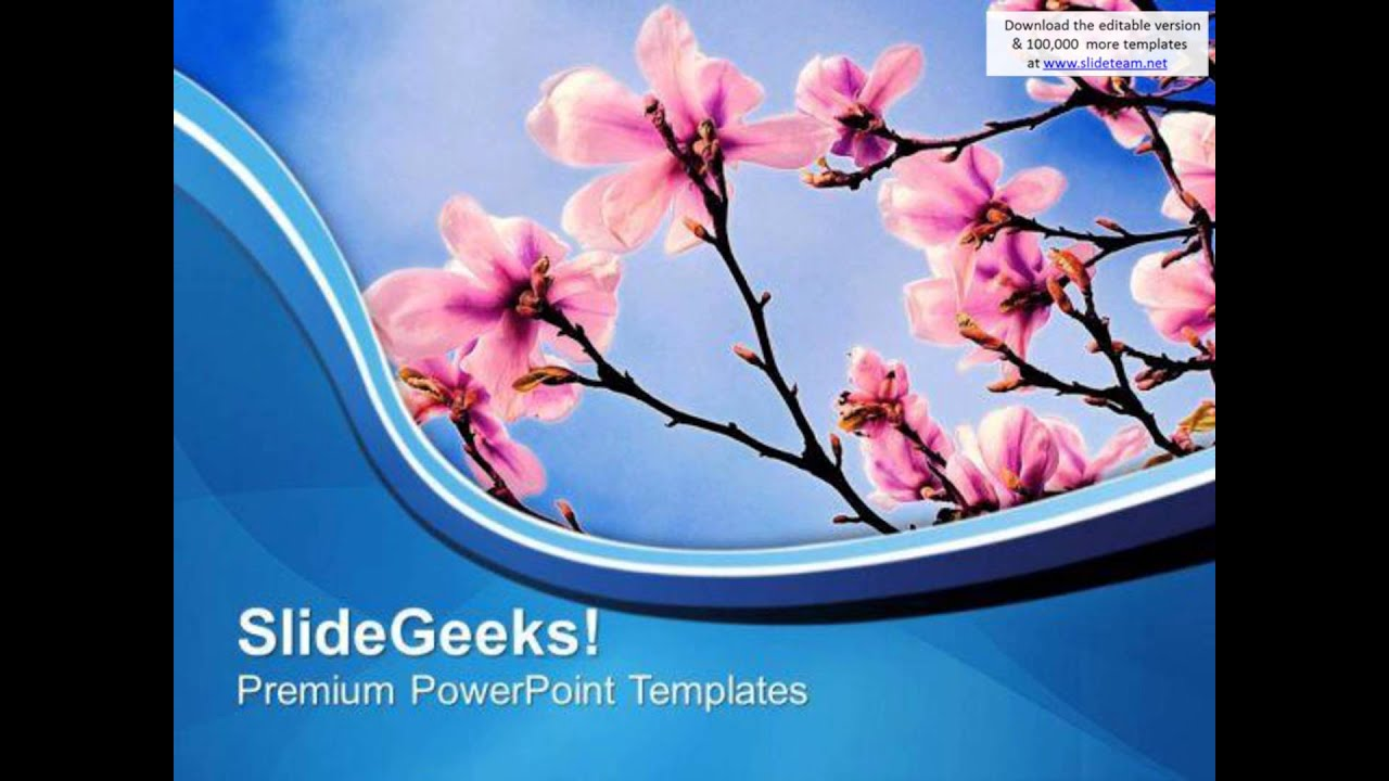 Theme of spring beauty of nature powerpoint templates ppt theme of spring beauty of nature powerpoint templates ppt backgrounds for slides 0613 presentation i toneelgroepblik Image collections