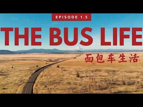 The Bus Life