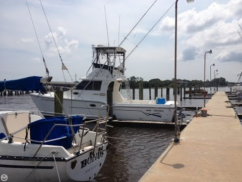 [SOLD] Used 2001 Baha Cruisers 340 King Cat Flybridge in Jacksonville, Florida