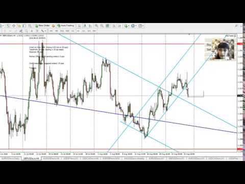 Forex Analysis for Major Pairs, Gold, August 28 - 02 Sept 2016