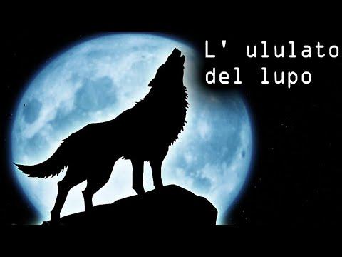 L' ululato del lupo