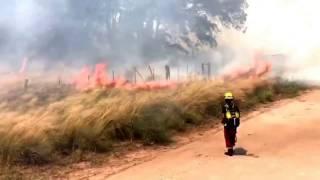 Bomberos combaten incendio de pastizales en cercanías del Aero Club