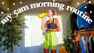 My 5am Productive Morning Routine (yes I'm one of those people...)