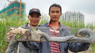 Giao lưu (võ minh phụng ) kênh miền tây sông nước  . . .hổ đất 2,5kg