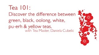 Tea 101: Discover the difference between green, black, yellow, white & pu-erh teas