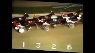 1973 Roosevelt Raceway BO SCOT'S TAFFY NYSS Carmine Abbatiello
