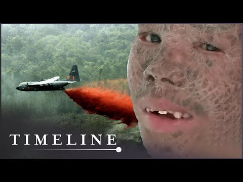 Children Of Agent Orange (Vietnam War Documentary) | Timeline