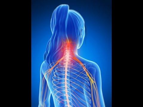 Charlotte Ballantyne Neck Pain Relief- Active Life Chiropractic