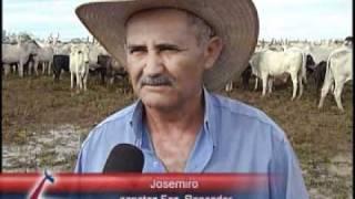 MATÉRIA CRV LAGOA - Fazenda Roncador
