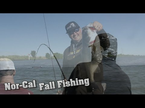 Fall fishing northern california youtube for Fishing without a license california