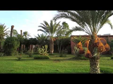 Living with Climate Change - DAAD Tunisia/Germany