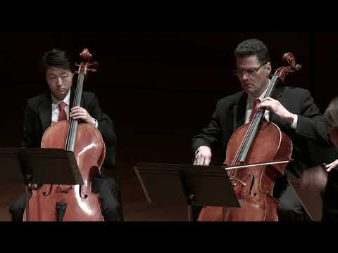 Brett Dean Twelve Angry Men for Twelve Cellos