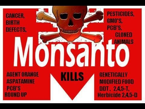 Monsanto, FDA and Corruption - TRUTH NOIR ep. 12