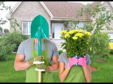How To Do Front Yard Landscaping It Yourself Ideas