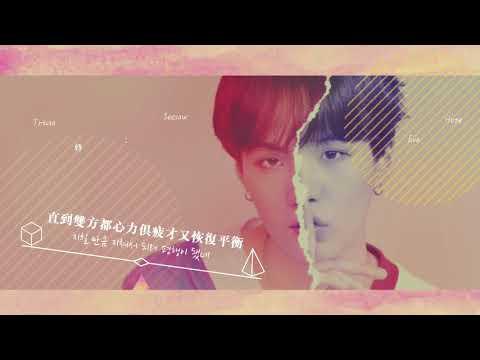 【韓繁中字】BTS 防彈少年團 - Trivia 轉 _ Seesaw (更正請開cc)