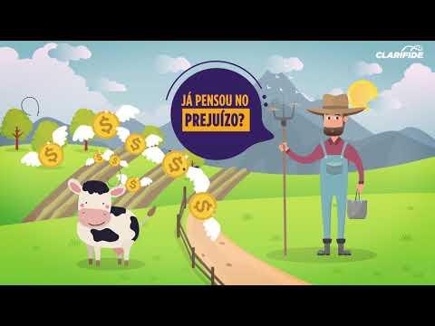 Vídeo sobre Medicamento Veterinário em Animação 2D | 02