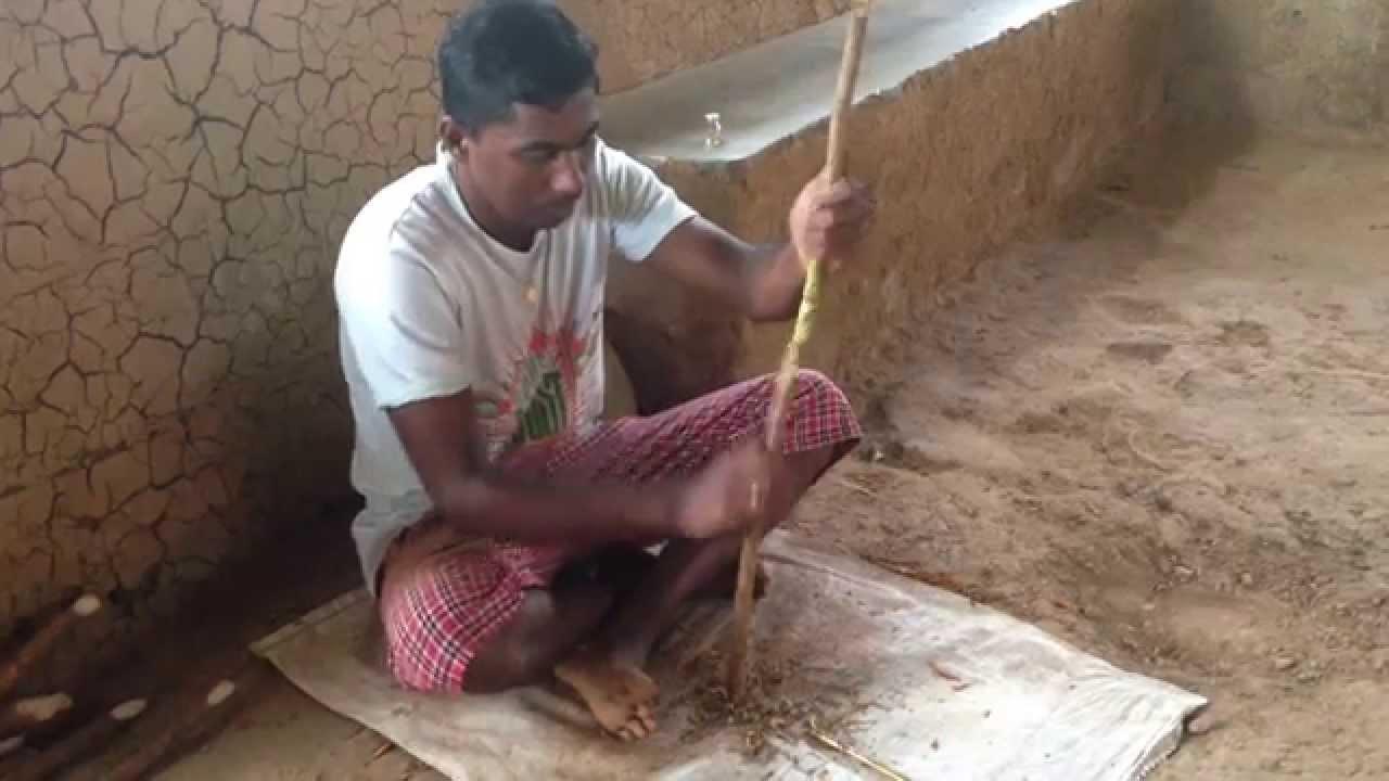 Resultado de imagen de canela en Sri Lanka