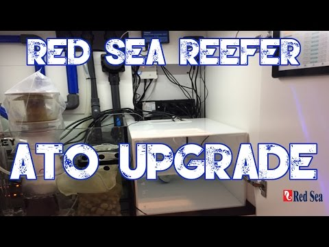 Red Sea Reefer 250   Custom ATO Container   Blue Tide Acrylics   MORE WATERRRRRRR