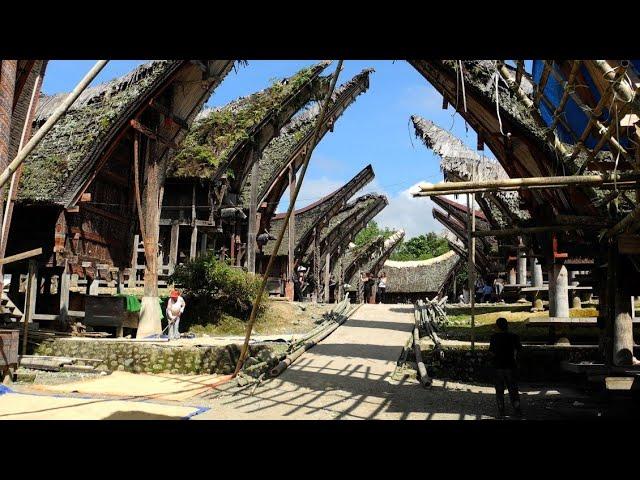 La muerte no es final del camino - I. Tana Toraja, Isla de Sulawesi. Indonesia