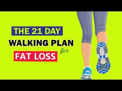 How to begin a Walking Plan