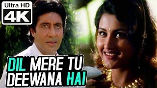 Dil Mere Tu Deewana Hai (Male)- 4K Video | Amitabh Bachchan | Sooryavansham | Kumar Sanu | Anu Malik