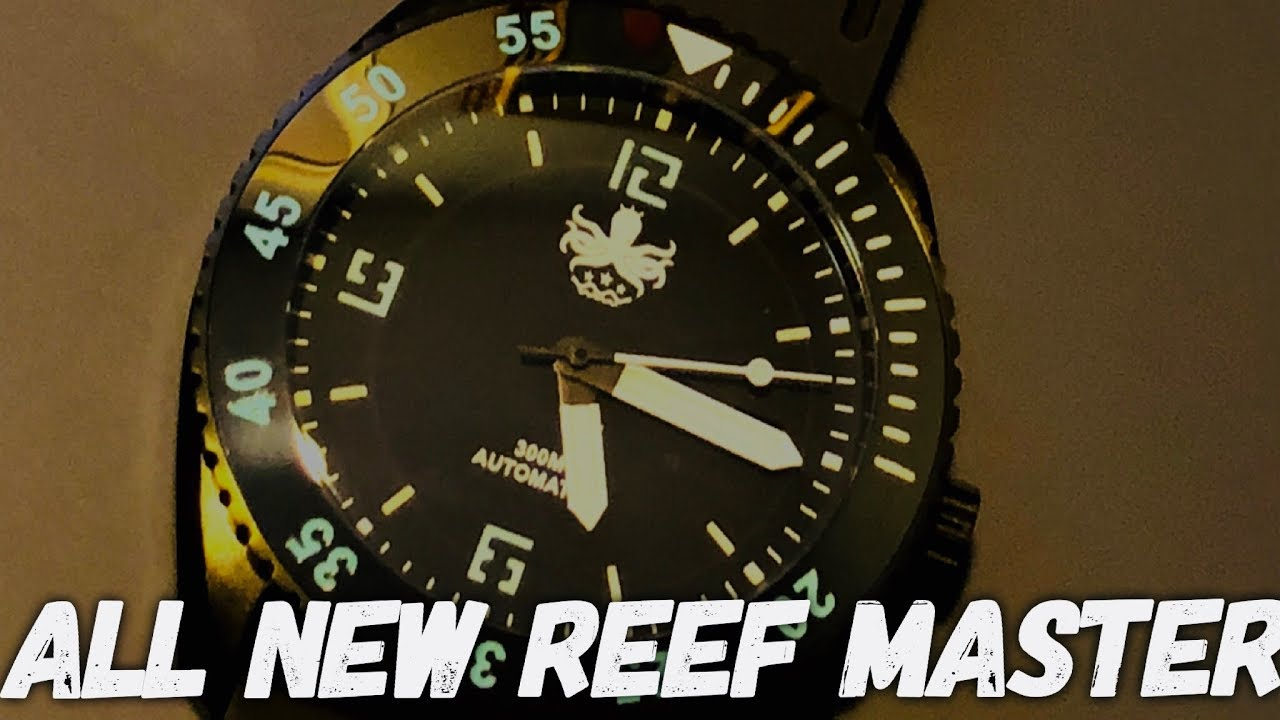 aee868839ad Phoibos REEF MASTER 300M Automatic Dive Watch Review - The BEST WATCH Under   250!