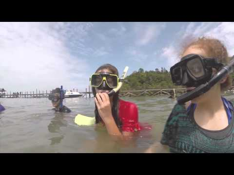 EIS-J ESAP Borneo 2014