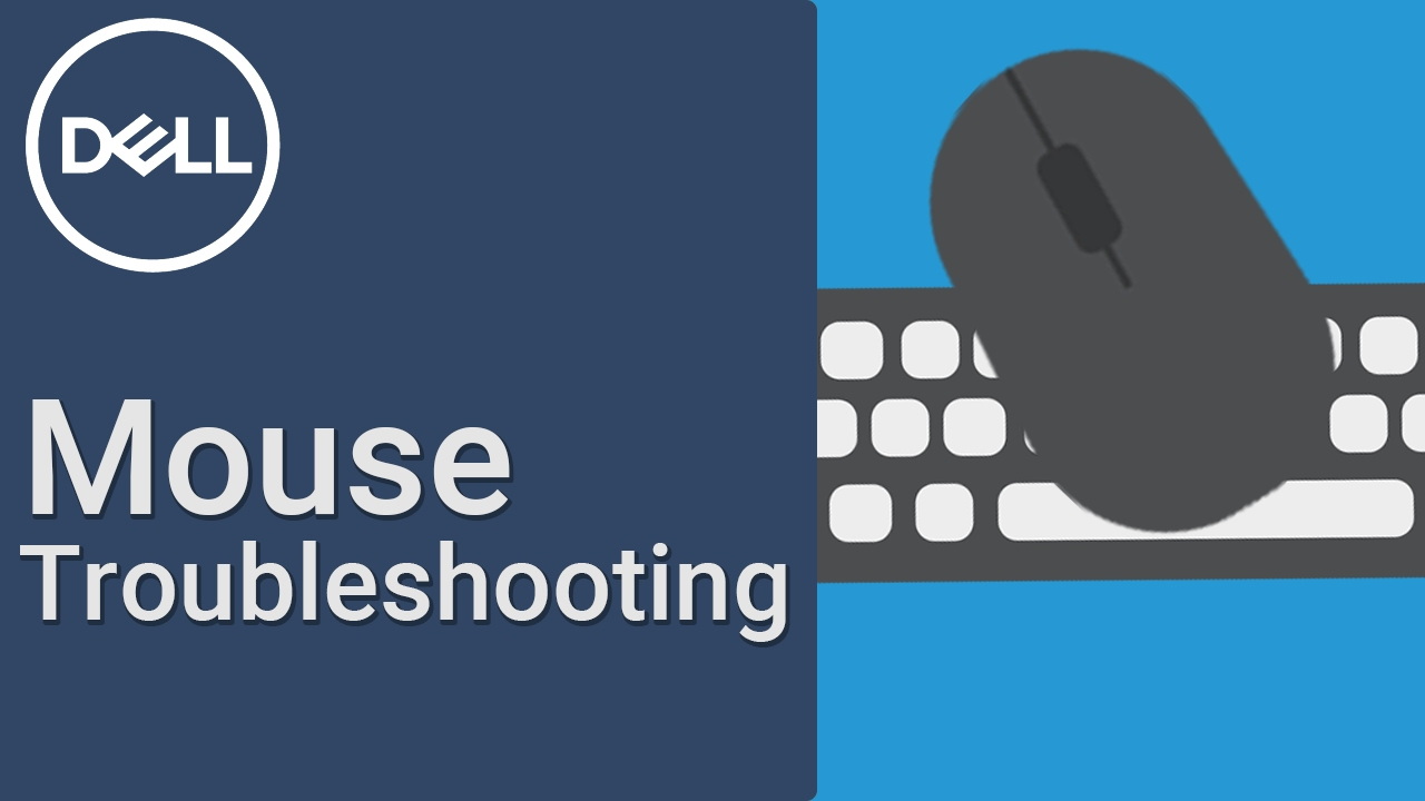 Mouse Usage and Troubleshooting Guide | Dell US