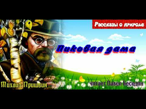 Пиковая дама— Михаил Пришвин —читает Павел Беседин