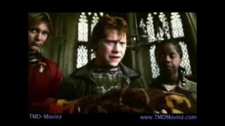 Watch Harry  The Potters The Missing Arm Of Viktor Krum video