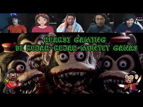 Reaksi Gaming Di Kejar Kejar Monyet Ganas