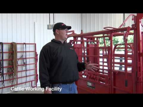 Barnz - Episode 2 - Garwood Cattle Company