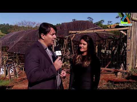 (JC 22/05/18) Saiba como construir uma casa através do sistema de permacultura