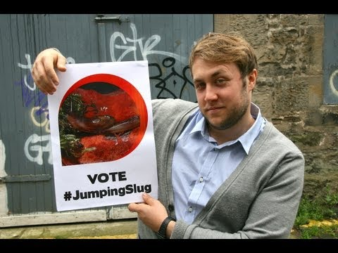Ugly animal vote - Dromedary jumping slug (Tom Toal)