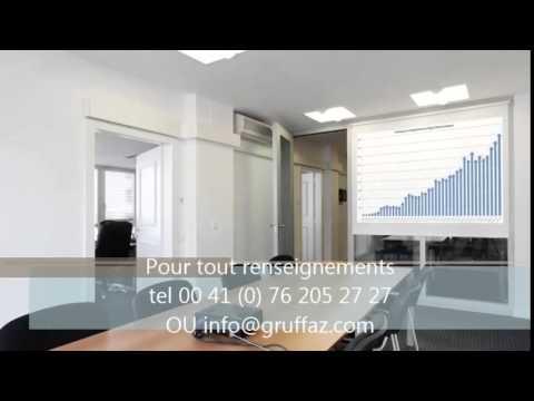 Geneve location bureau PVI Conseils