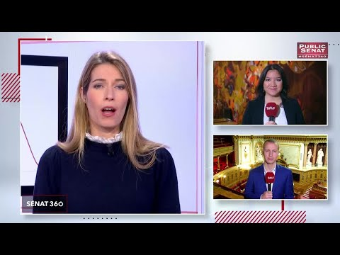 Le rendez-vous de l'information sénatoriale. - Sénat 360 (19/12/2018)